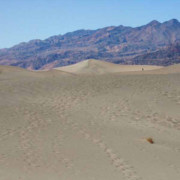 Mesquite Flat Sand Dunes Death Valley