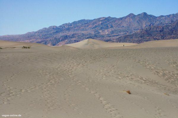 Mesquite Flat Sand Dunes Death Valley