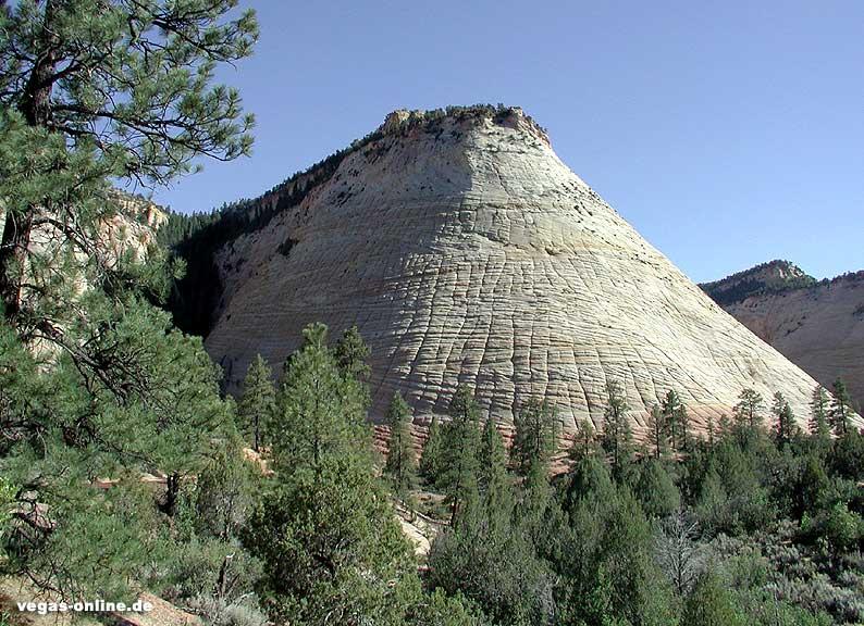Zion Nationalpark Checkerboard Mesa